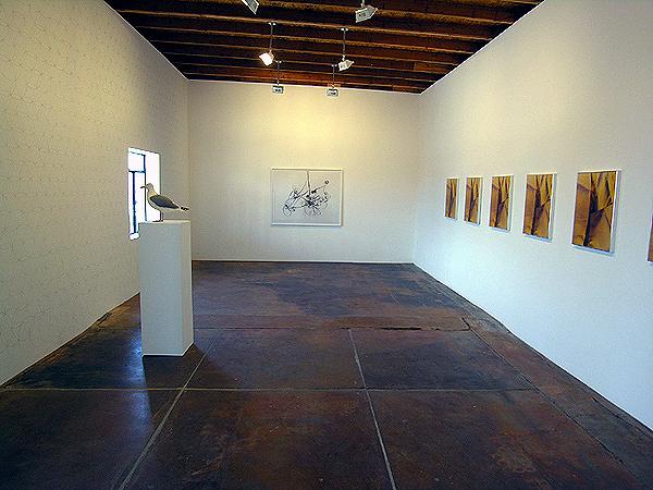 Installation view: Peter Coffin, Anne Collier and Eileen Quinlan.