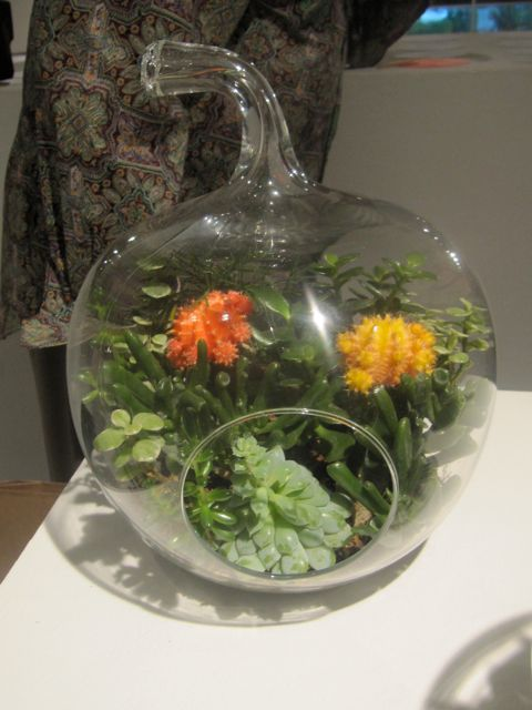 """Buenos Aires"" terrarium by Vernon Caldera of Left Brain Right Brain Design"
