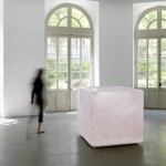 Roni Horn- Pink Tons