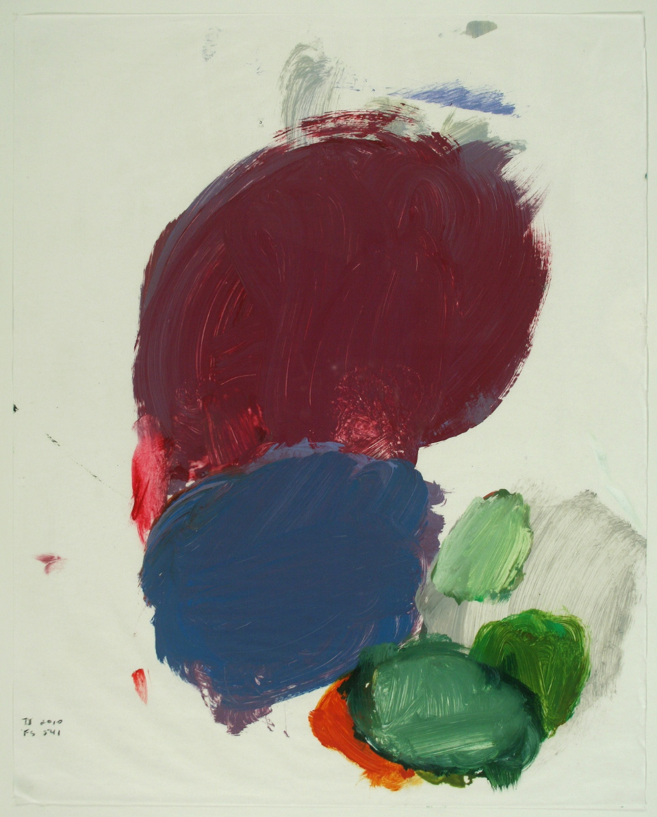 "Terrell James, FS 541, 2010 oil on paper 20"" x 16"""
