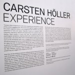 Carsten Holler at the New Museum