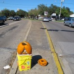 Tidy Cat Jack-o'-Lanterns in Montrose