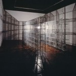 Mona Hatoum, 'Light Sentence' (1992)