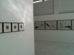 Supremat, installation view