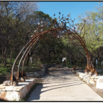 City of Austin To Unveil Arboreal Passage, Wants Your Asian Rocks!