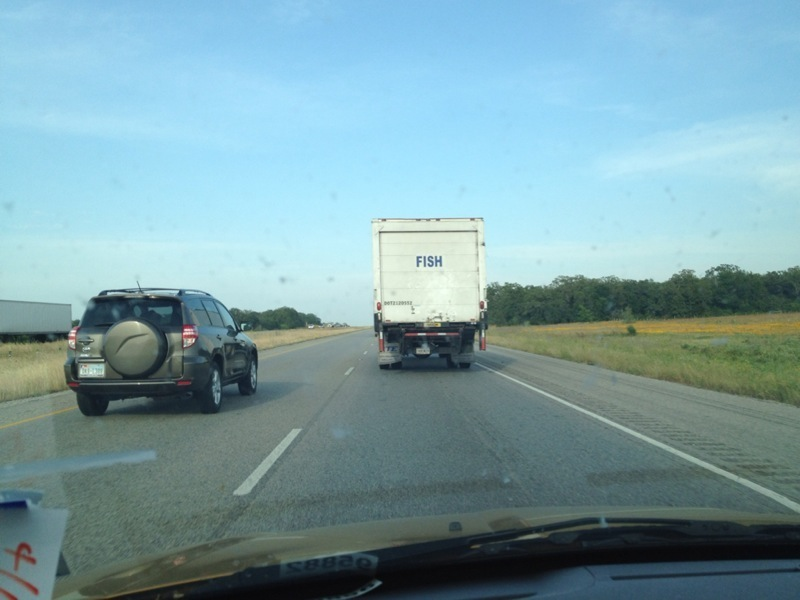 Truck, presumably carrying fish, on 281 Northbound just outside Premont. JIm Wells County.
