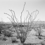 """Big Bend"" by Jack Ridley at Photographs Do Not Bend"