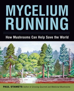 """Mycelium Running (2005) is described as """"a manual for the mycological rescue of the planet."""""""