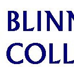 Blinn College Faculty Art Show