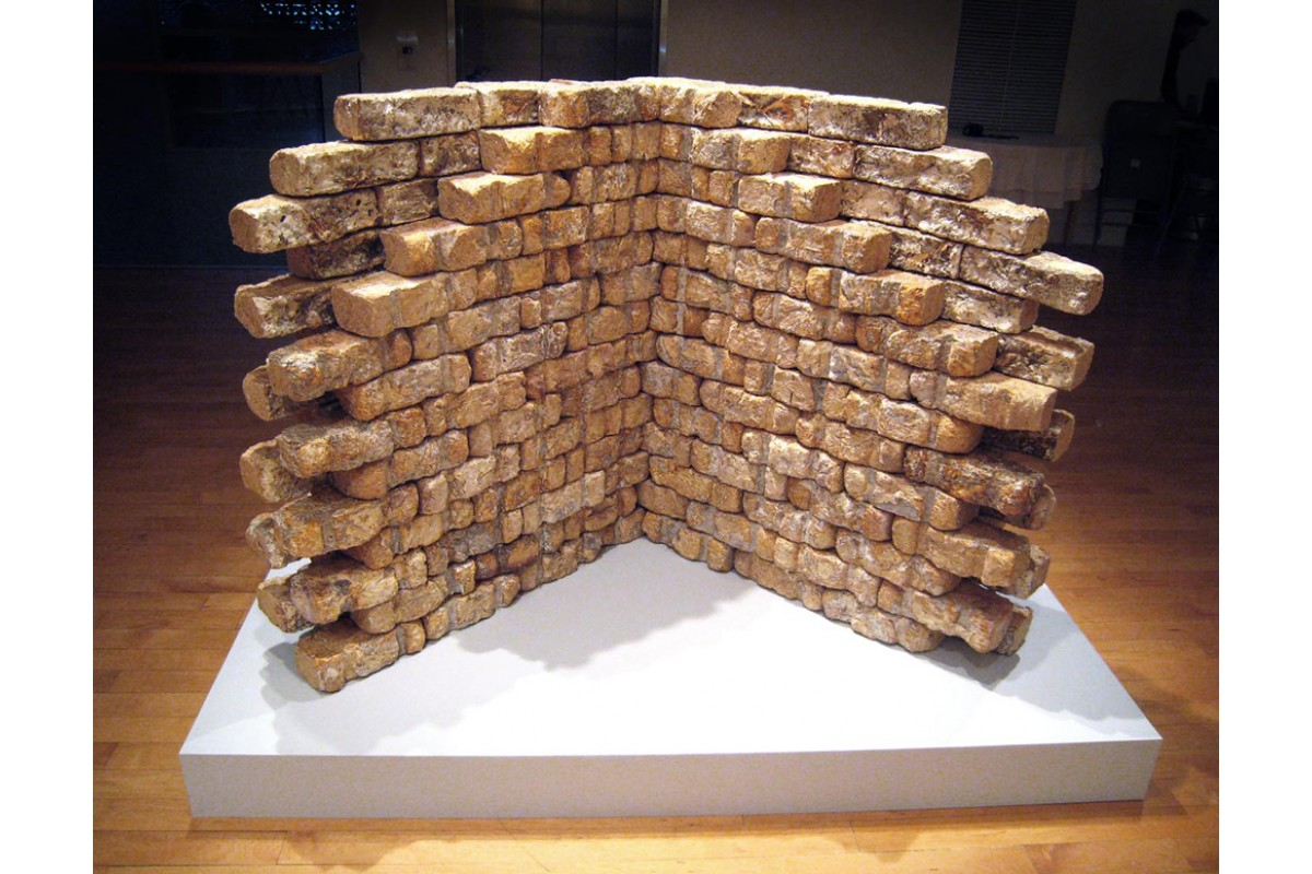 "Reishi bricks on view in ""Intimate Science"" exhibition at Miller Gallery, Carnegie Mellon"