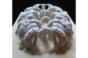 "One of Ross' ""Mycotecture Models"""
