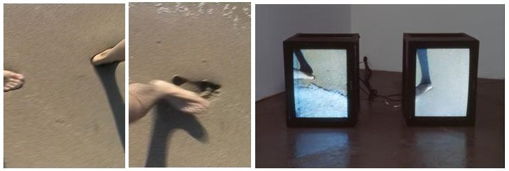 Janine Antoni and Paul Ramirez-Jonas Migration 1999 Video still