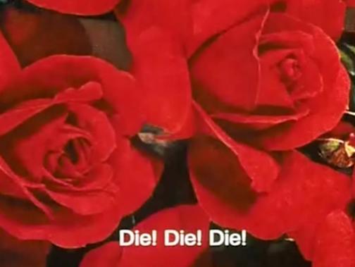 daisies11