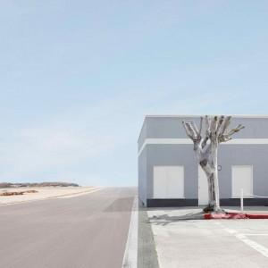 Lauren Marsolier, Building and Tree, 2010