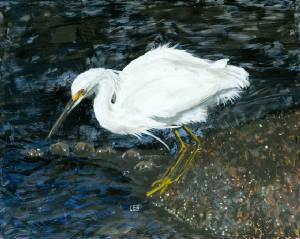 'Snowy Egret' (2011)