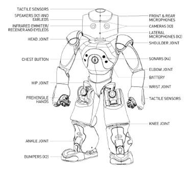 NAO robot schema