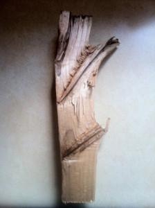 A gorgeous split piece of wood.