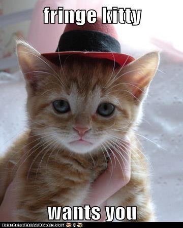 fringe kitty
