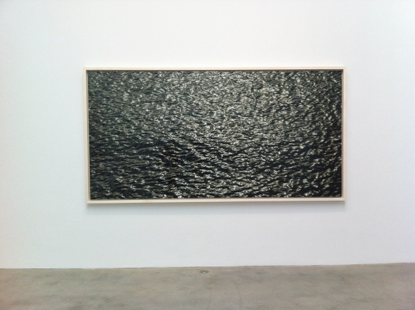 Richard Misrach at Pace Gallery