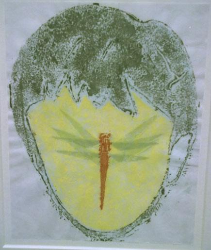 Takashira- Dragonflies
