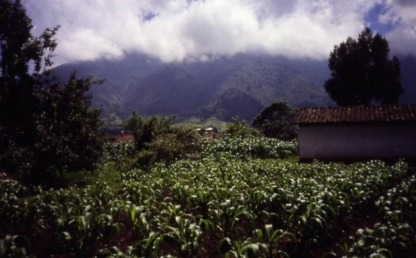 View out Dr. Koontz's window, Choquiac Cantel, Guatemala, c. 1991