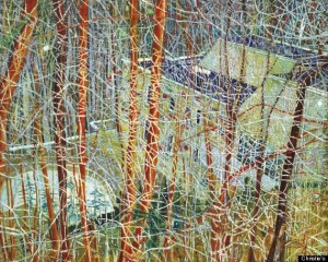 Peter Doig, The Architect's Home in the Ravine, 1991