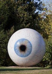 Tasset_eye