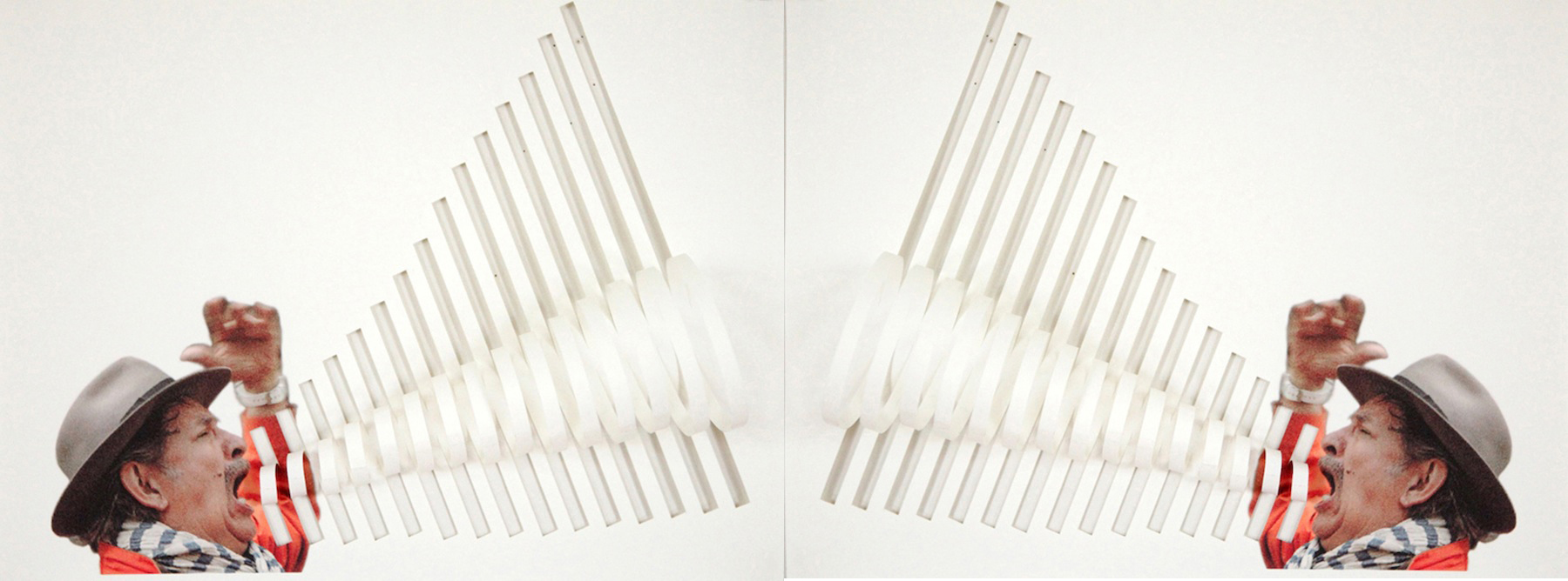 Miguel Ángel Ríos, META (diptych), 2012. Courtesy of the artist and Sicardi Gallery.