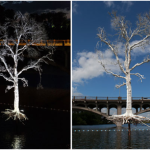 Austin's THIRST Tree Damaged by Recent Floods
