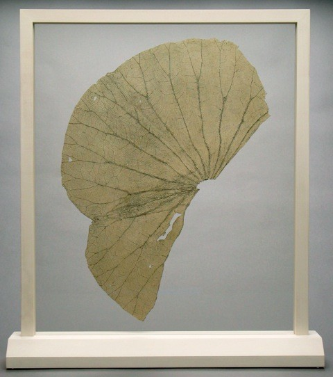 Gabriel Orozco (Mexican, 1962-  ), Lotus Leaves (two/thirds leaf variation mounted with vertical tilt). Etching on gampi mounted between UV resistant museum glass in wooden frames. Signed and numbered under base in pen. Lapis proof, 2 of 2. Courtesy of The Lapis Press