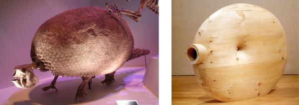 (l) Glyptodon, Pleistocene period (r) Martin Puryear, Deadeye, 2002