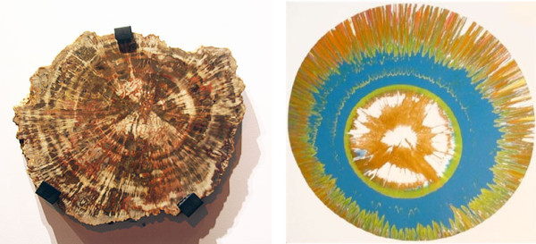 (l) Petrified Wood, Late Triassic, Apache County, Arizona (r) Damien Hirst, Untitled Spin Painting, 2001
