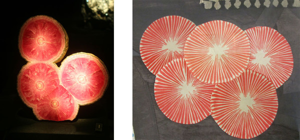 (l) Rhodochrosite (polished), Capillitas Mine, Argentina (r) Louise Bourgeois, CINQUE (detail), 2005