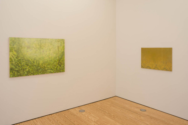 Paintings at sicardi Gallery