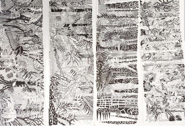 Drawings done in the rainforests of Costa Rica and Nicaragua