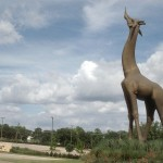 Dallas Zoo's Bronze Giraffe is Ready for a New Pal