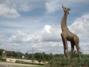 Giraffe-sculpture-at-Dallas-Zoo_151830