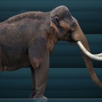 The Perot Museum in Dallas Gets a Mammoth Gift