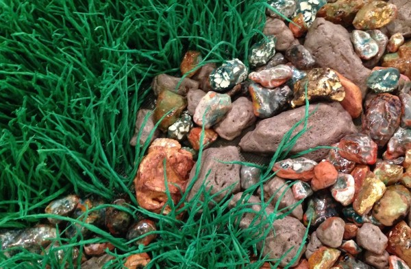 rocks and grass, detail