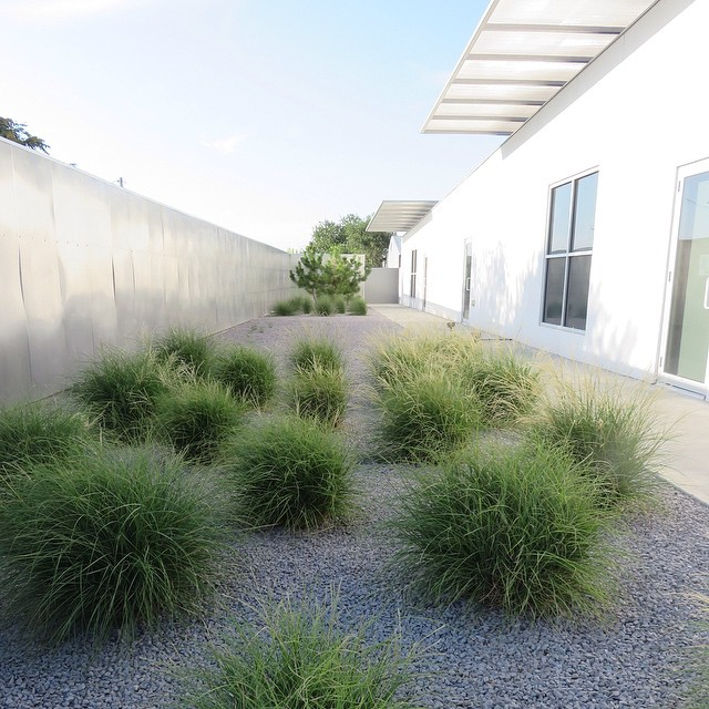 The courtyard of indejacobs Gallery Marfa
