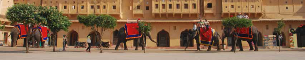 India-Trip-2