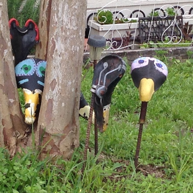 Bicycle seat birds
