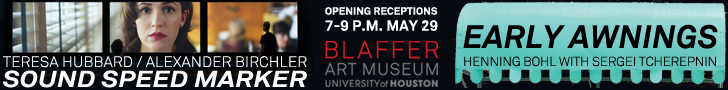 Blaffer Art Museum: Sound Speak Marker and Early Awnings
