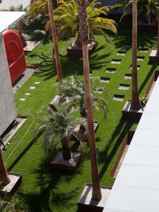 Robert-Irwin-Palm-Garden-LACMA