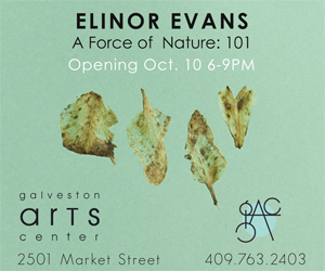 Galveston Arts Center: Elinor Evans
