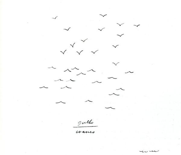 wegman gulls waves