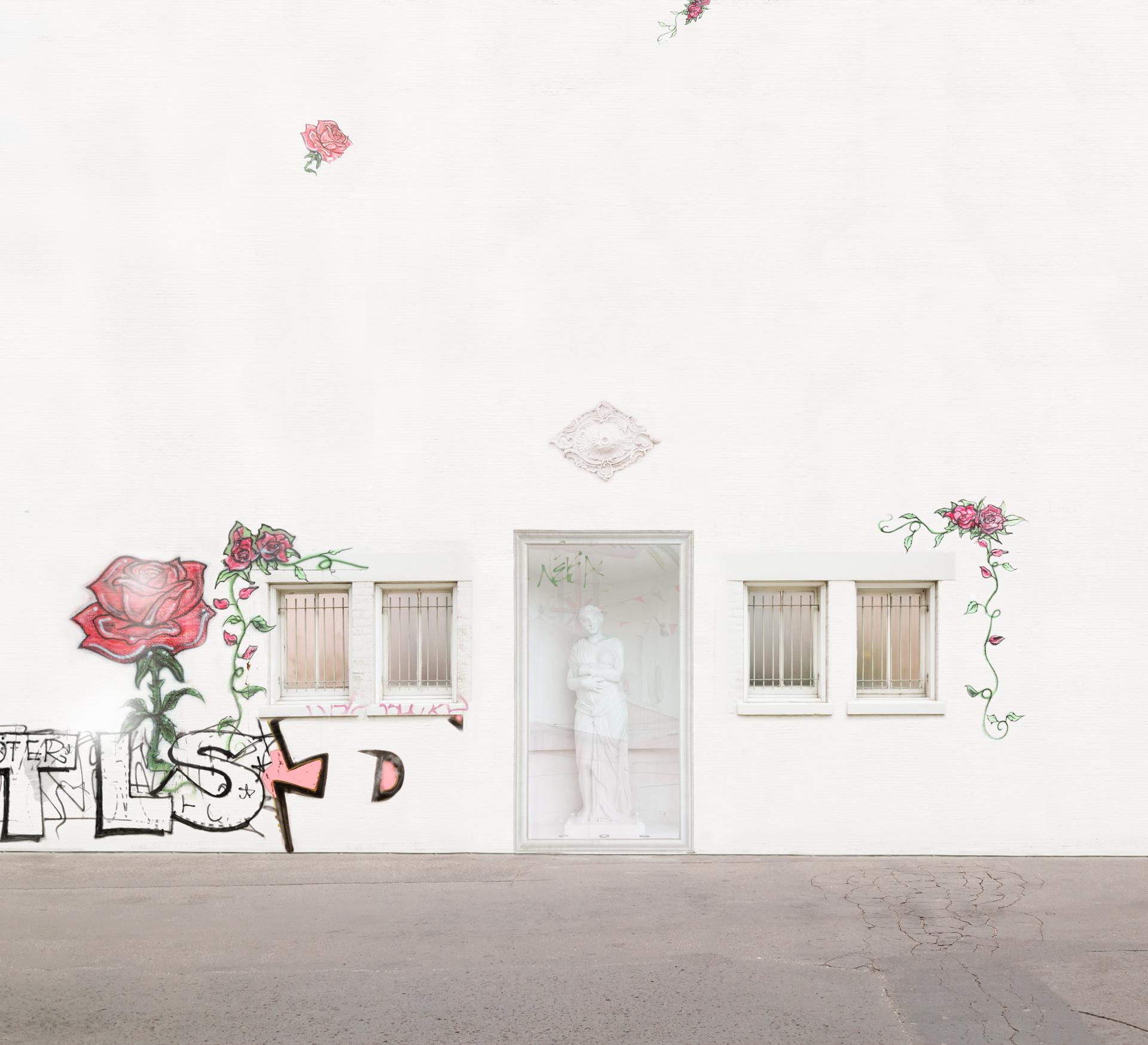 016Merrill Roses