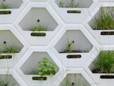 Living Wall: Collaboration + Fabrication