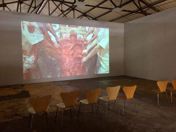Nitsch: video still installation