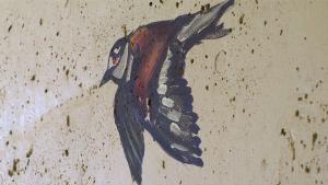keller-bird